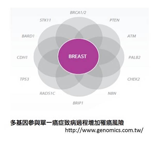 基因檢測-3.tif