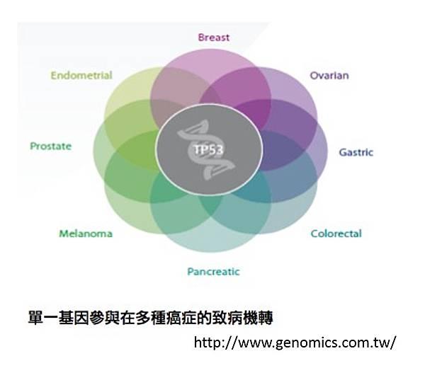基因檢測-4.tif