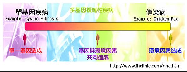 基因檢測-2.tif
