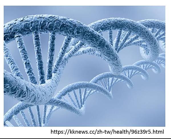 基因檢測-0.tif