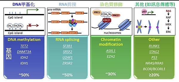 MDS mutated gene category.tif