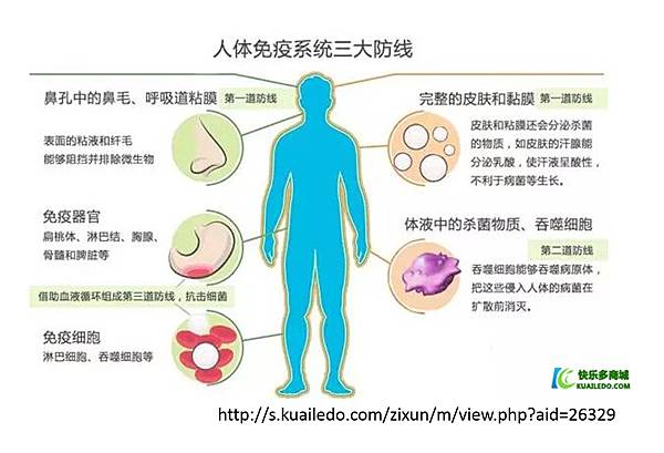 免疫系統-1.tif