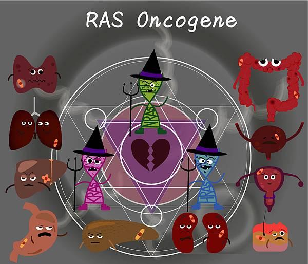 16-16RAS-oncogene-簡介.jpg