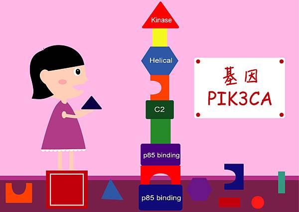 42PIK3CA蛋白質結構圖.jpg