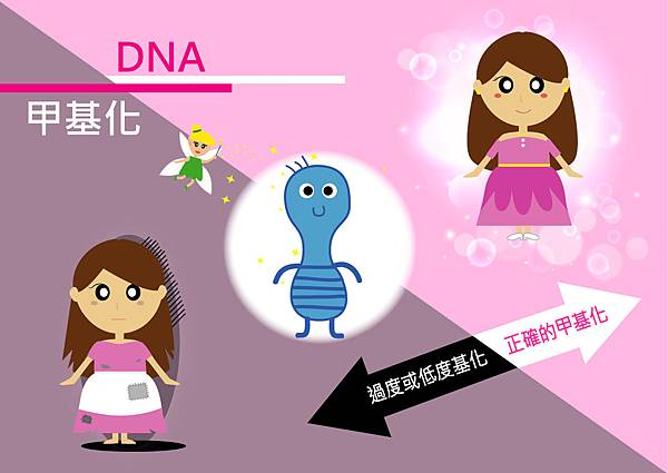 40DNA甲基化.jpg