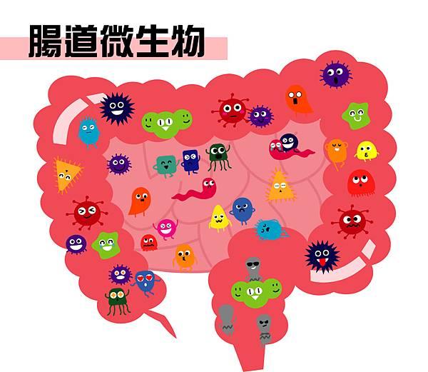 54腸道微生物的巨大效應.jpg