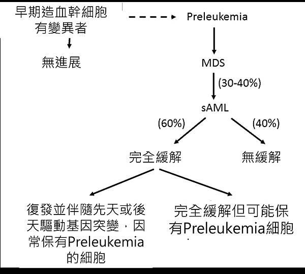 preleukemia-發展過程.tif