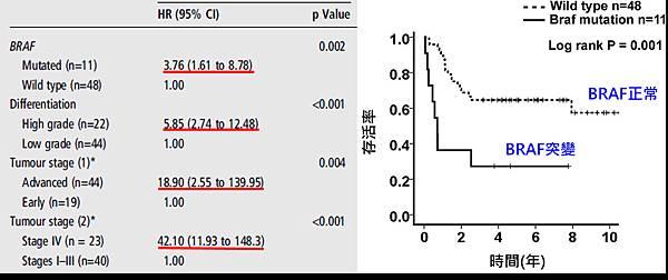CRC-BRAF mutation-survival.tif
