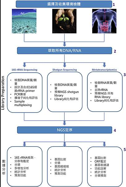 Microbiota-NGS strategy.tif