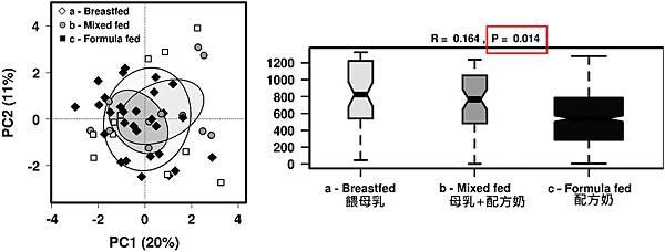 腸道菌相-1歲嬰兒-3.tif