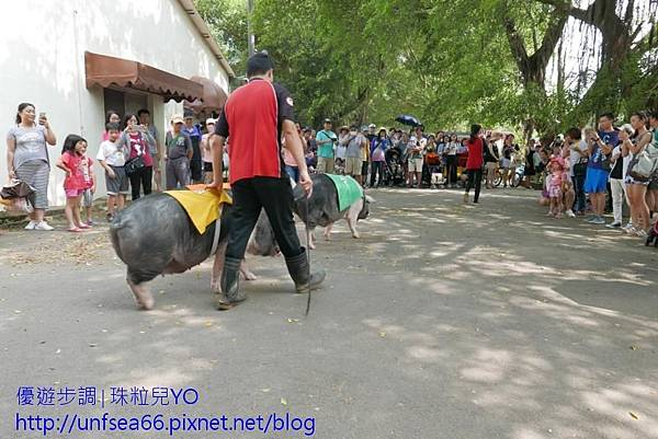 image069_YoYoTempo_桃園楊梅味全埔心牧場.jpg