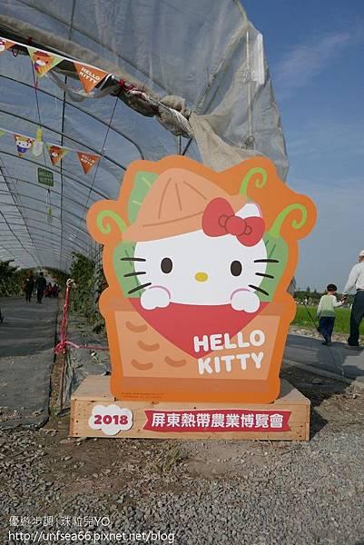 image007_YoYoTempo_2018世界唯一Hello Kitty彩繪稻田超吸睛.jpg