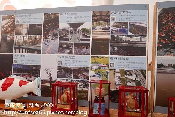 image015_YoYoTempo_桃園農業博覽會.jpg