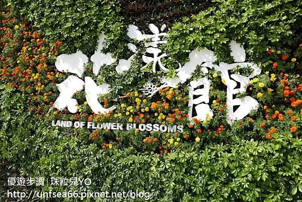 image027_YoYoTempo_桃園農業博覽會.jpg