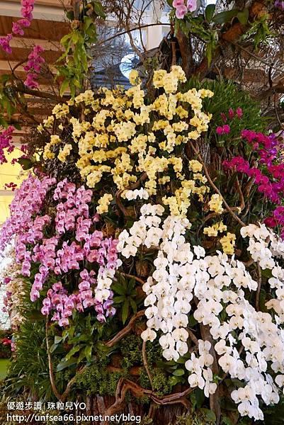 image045_YoYoTempo_桃園農業博覽會.jpg