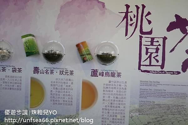 image085_YoYoTempo_桃園農業博覽會.jpg