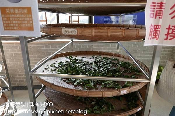 image091_YoYoTempo_桃園農業博覽會.jpg