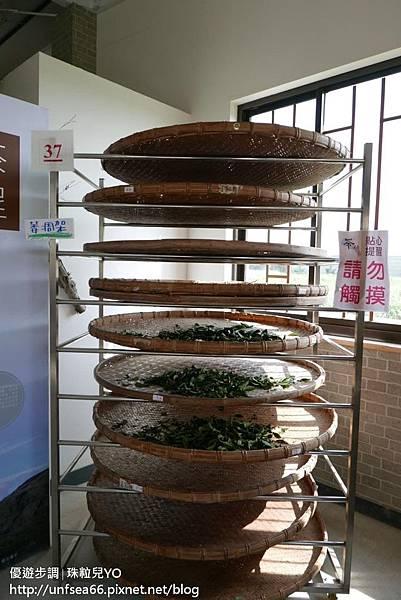image093_YoYoTempo_桃園農業博覽會.jpg