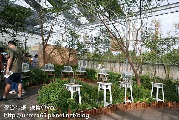 image217_YoYoTempo_桃園農業博覽會.jpg