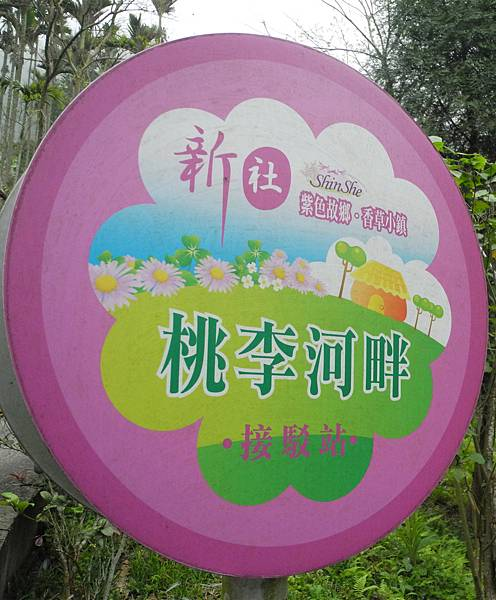 1060317桃李河畔-DSCN6143.jpg