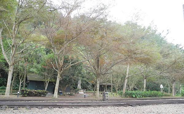 泰安火車站-DSCN5849.jpg