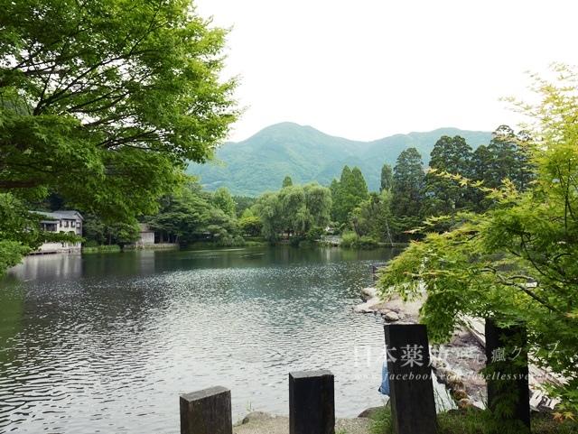 2016日本九州由布院小旅行:最新版!15個由布院的好美、好吃、好玩、好買私心推薦~
