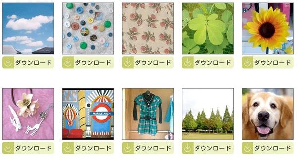 lapin sticker2.jpg