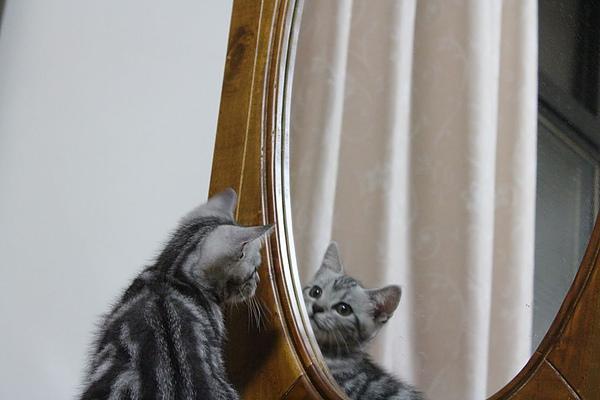 20100825鏡子