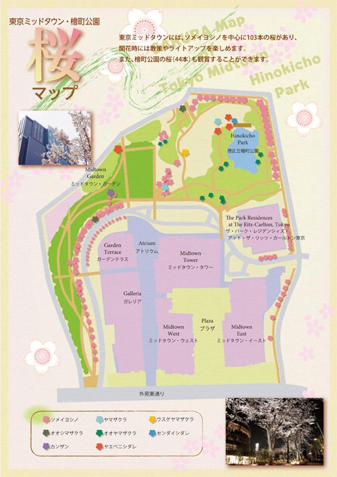東京中城,檜町公園 賞櫻攻略