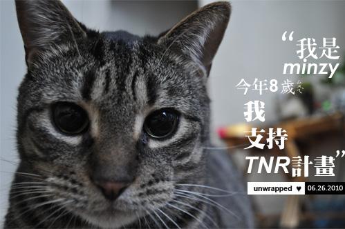minzy_tmr.jpg