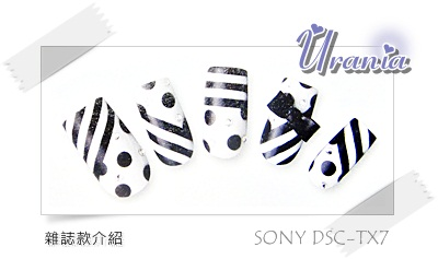 DSC04553.JPG