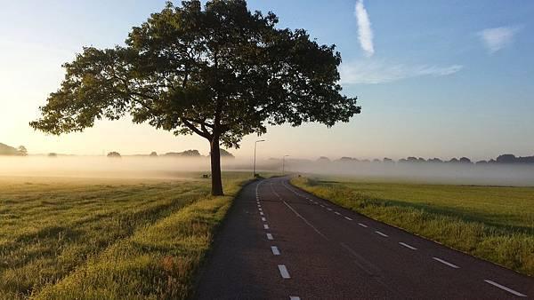 road-1245901_1920.jpg