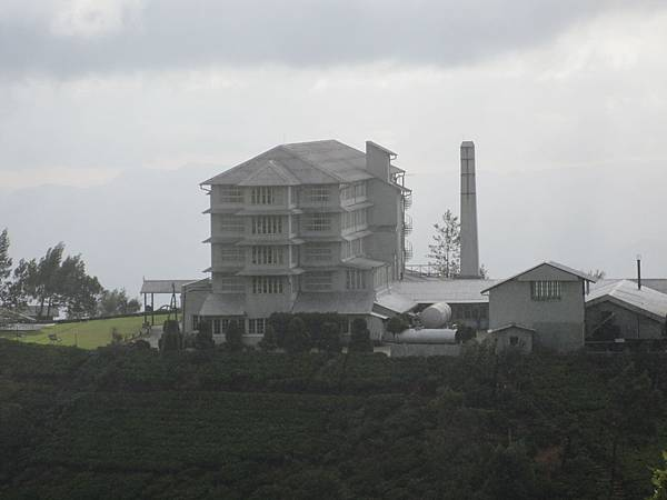 從遠處眺望The Tea Factory