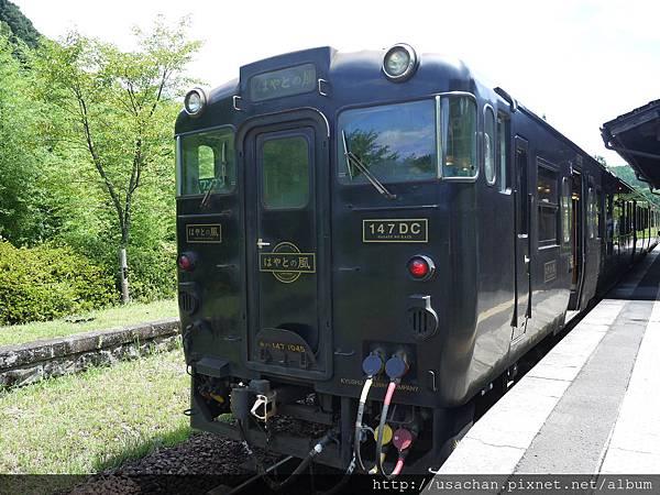 P1100564.JPG