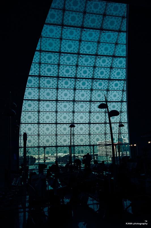 IMG_9240.jpg