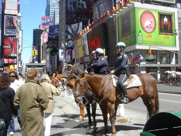 0409 NYPD