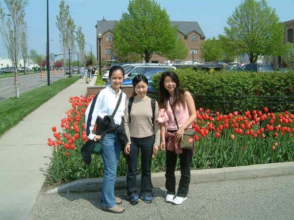 Holland, 5/3,2003