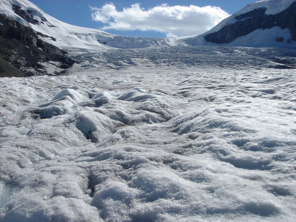 0818 columbia icefield