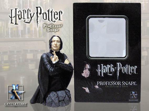 Snape 雕像與包裝盒.jpg