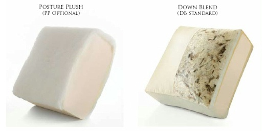 Comfort Design Cushions