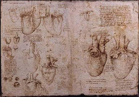 心臟手稿.jpg