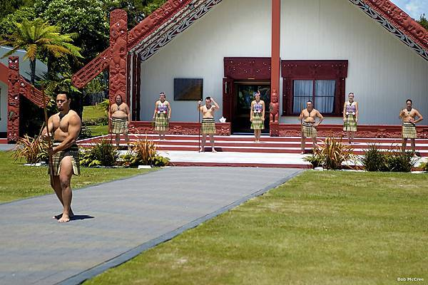 MC137-Te-Puia-Rotorua-Bob-McCree.jpg
