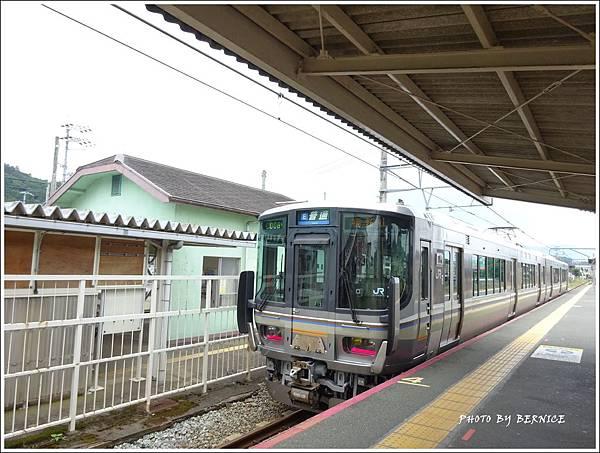 DSC07077_副本.jpg