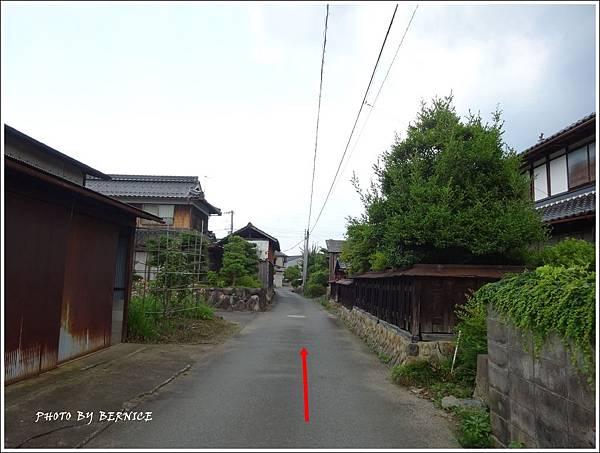 DSC07084_副本_副本.jpg