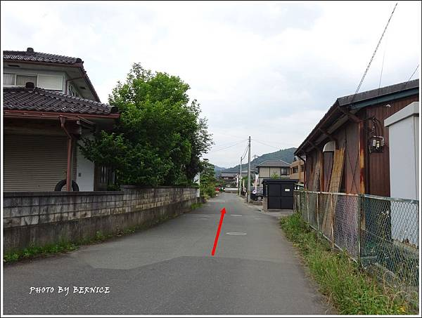 DSC07327_副本.jpg