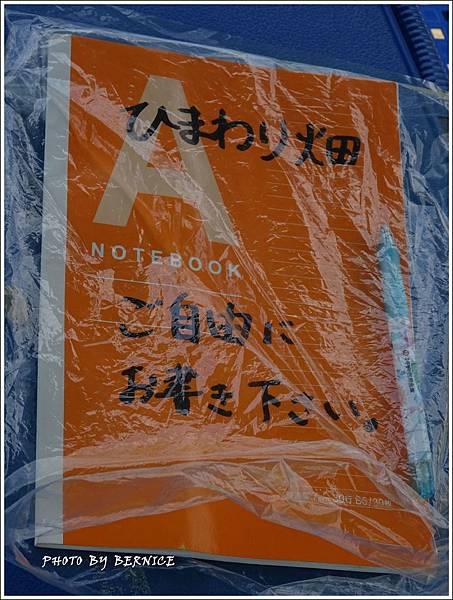 DSC09778_副本.jpg