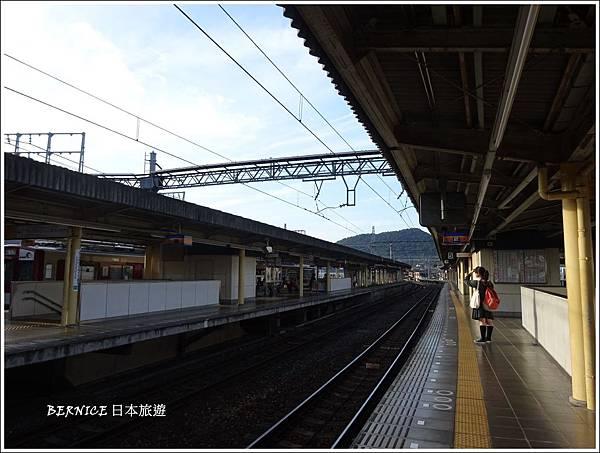 DSC03649_副本.jpg