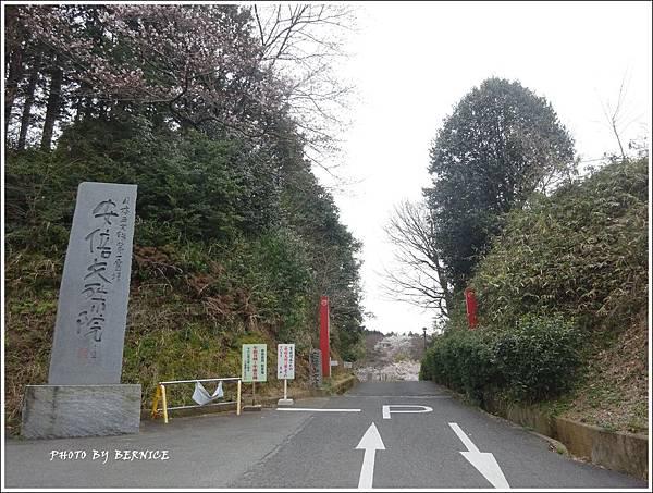 DSC05339_副本.jpg
