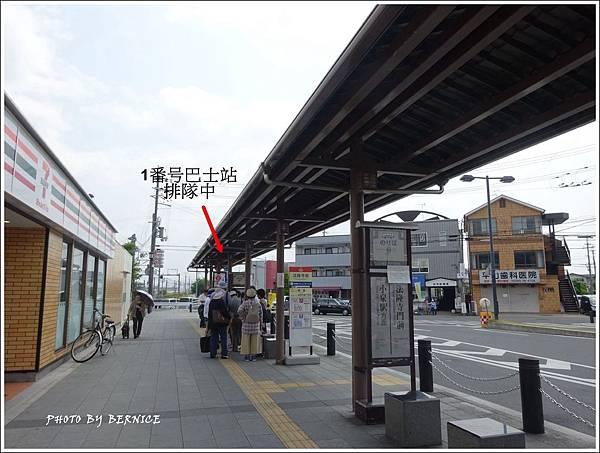 DSC08723_副本.jpg