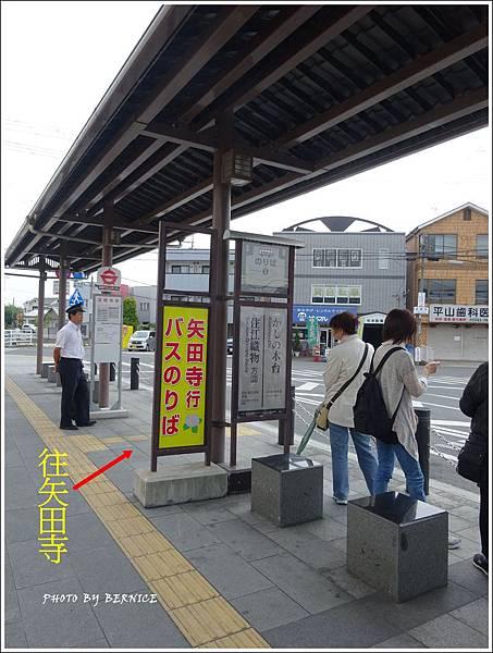 DSC08725_副本.jpg